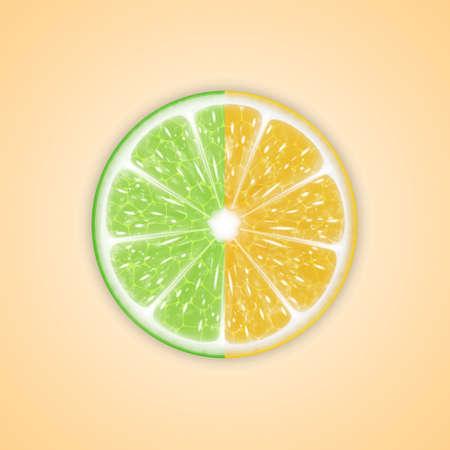 감귤류의 과일: 감귤류와 배경