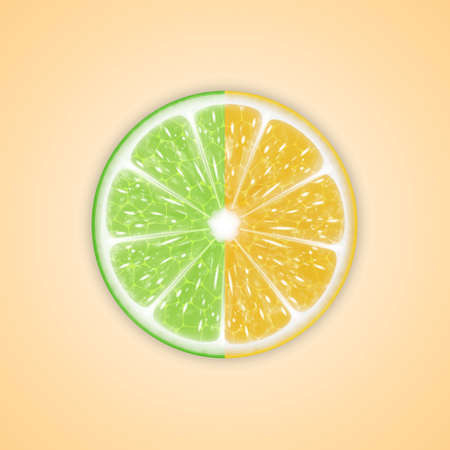 citrus: Background with citrus fruits