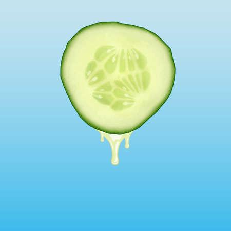 cucumber: Cucumber Illustration