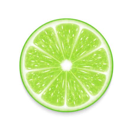 lime juice: Lime slice Illustration