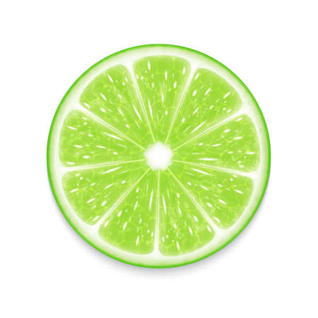Lime slice Vectores