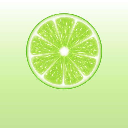 Lime slice Иллюстрация