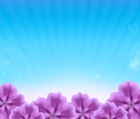 blue sky: Beautiful flowers