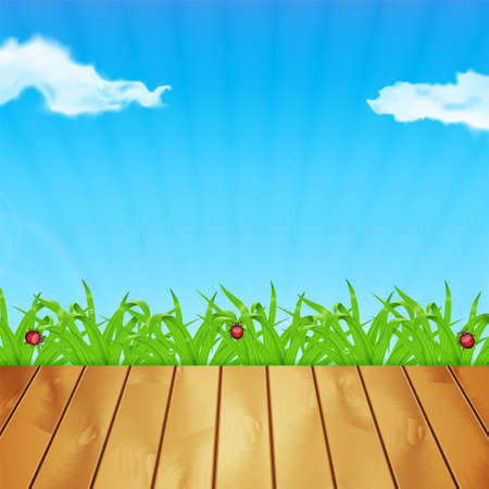 waterdrop: Background with green grass. Grass with ladybug and waterdrop. Sky with cloud. Landscape. Summer time. EPS10 vector