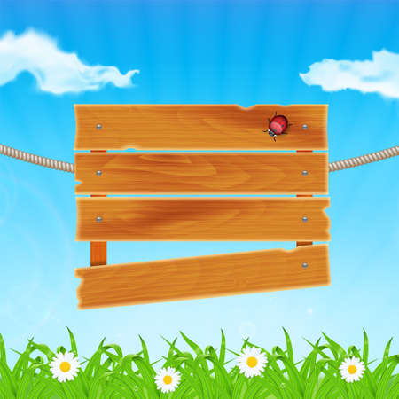 waterdrop: Background with green grass and chamomile. Grass with ladybug and waterdrop. Wooden plank on meadow. Sky with cloud. Landscape. Summer time. vector