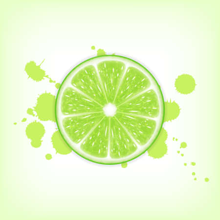 lime slice: Background with lime slice. High quality vector. vector
