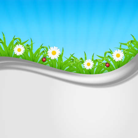 waterdrop: Background with green grass. Grass with ladybug and waterdrop. Chamomile with grass. Landscape. Summer time. vector Illustration