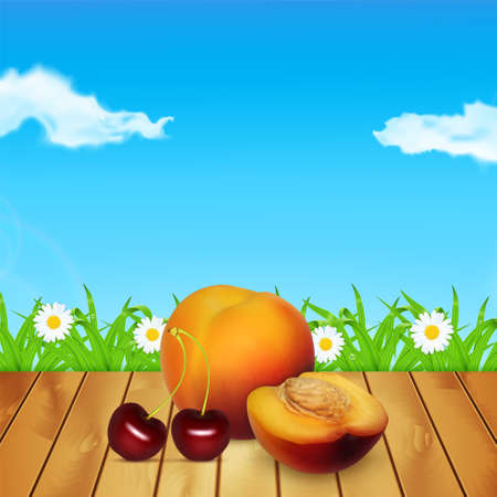 nectarine: Nectarine and cherry on wood. Background with nectarine and cherry. Background with grass and chamomile. Time for a picnic. High quality vector.