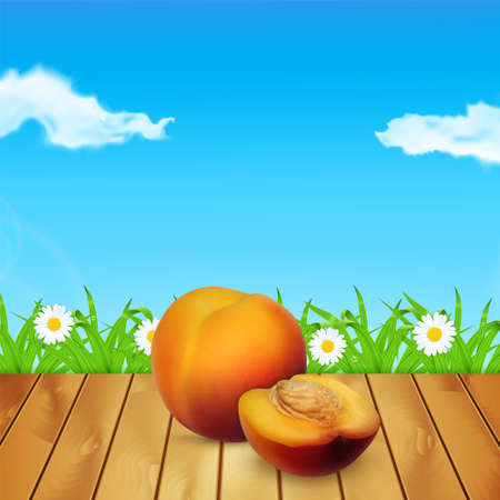 nectarine: Nectarine on wood. Background with nectarine. Background with grass and chamomile. Time for a picnic. High quality vector.