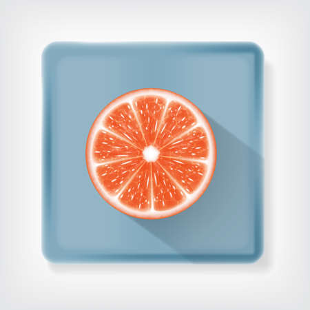 Grapefruit. Ison with long shadow. vector