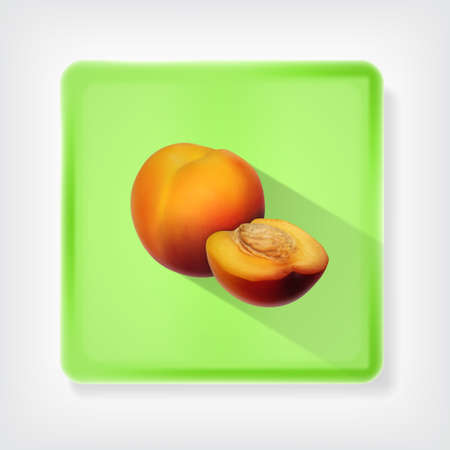 nectarine: Nectarine. Icon with long shadow.  vector
