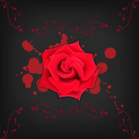 Red rose with splashes on black background. Bloody splashes with a rose. High quality vector. EPS10 vector
