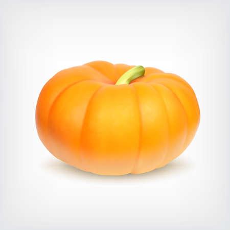 fall harvest: Pumpkin. Vector icon. EPS10 vector