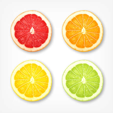 lemon lime: Citrus fruit slices. Grapferuit, orange, lemon, lime.