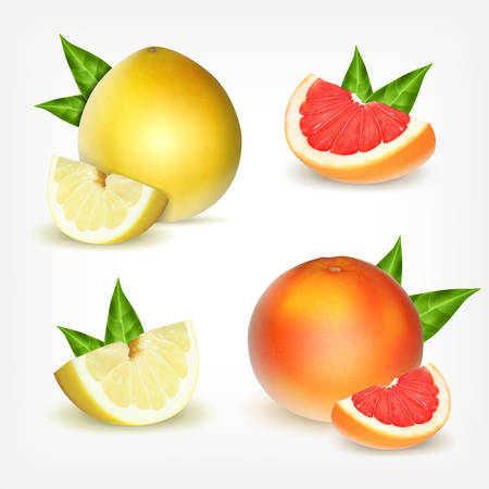 grapefruit: Set of citrus fruits. Grapefruit and pomelo with green leaves.