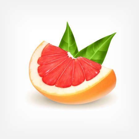 grapefruit: Fresh grapefruit slice with green leaves.