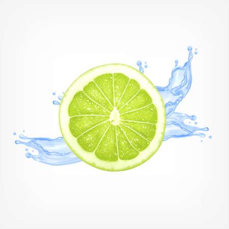 lime slice: Lime slice with water splash. Illustration