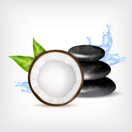 zen like: Spa stones with coconut and splashing water. Illustration