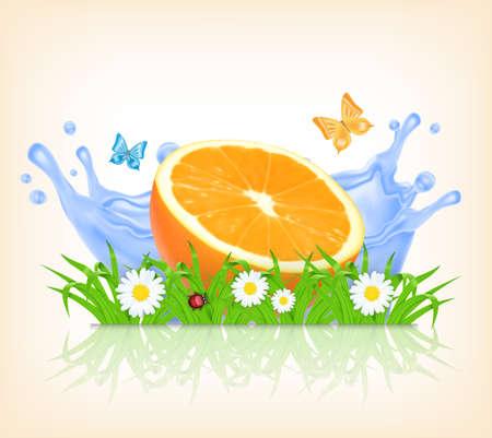 splashing water: Grass and orange fruit on a background of splashing water. Summer time. Illustration