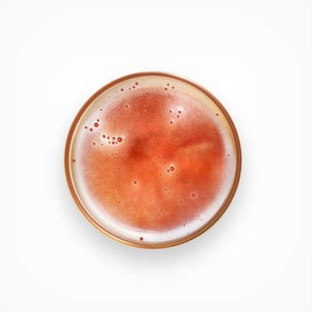 Glas Bier. Draufsicht. Realistische Vektor-Symbol.