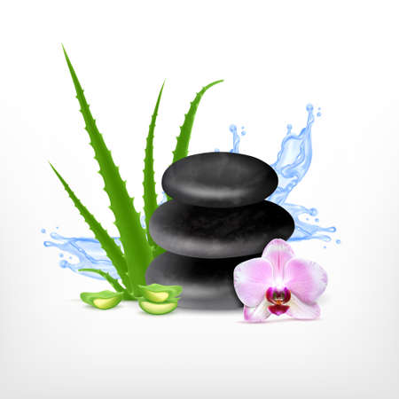 zenlike: Spa concept with aloe. Illustration