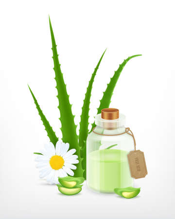 Aloe with essential oil. Illustration