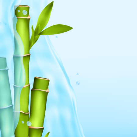 Bamboo in a water splash Illustration