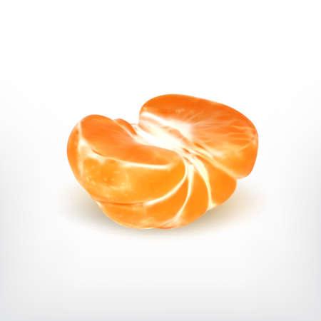 Ripe half tangerine, realistic illustration.