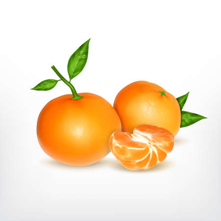 Ripe tangerine with slice, realistic illustration.
