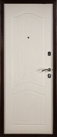 Frontal image of a closed door, isolated on white background