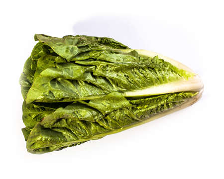 Freash green salad isolated on white.