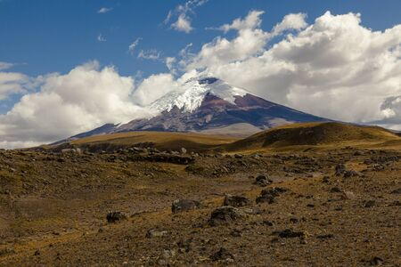 glaciar: Cotopaxi, an active volcano, at sunset with horses in the foreground Stock Photo