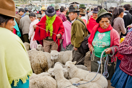 indigenous: Indigenous animals on the market