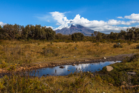 Puddle of water in the Cotopaxi National Park, with volcano in the background
