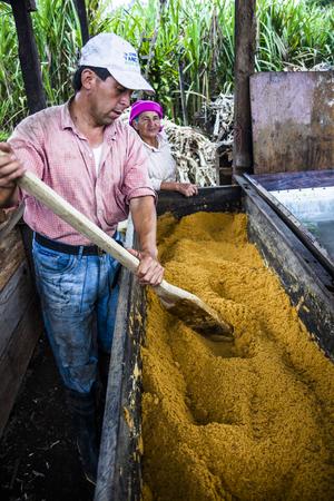 panela: SANTO DOMINGO, ECUADOR - APRIL 15, 2010: Couple of brown sugar farmers in developing his farm in Santo Domingo, Ecuador. Editorial
