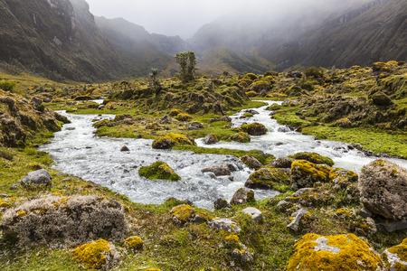 Collanes Valley in El Altar volcano Sangay National Park