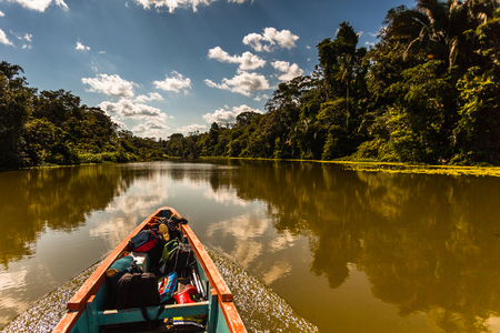 Reflected jungle in the Limoncocha lagoon in the Ecuadorian Amazon