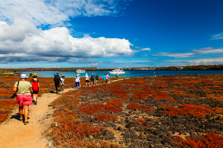A group of tourists visiting Isla Plaza Sur, returns to their boat, Galapagos Stock Photo