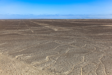 From a tower you can see some straight nazca lines that extend to the horizon and the curves of the tree