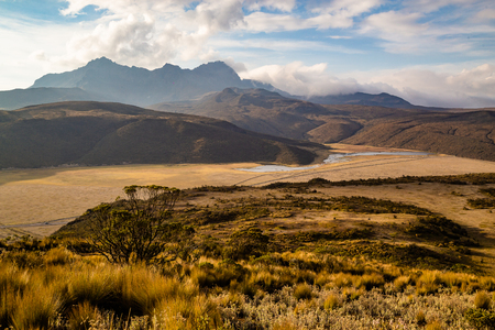 Andean landscape at sunset with the Limpiopungo lagoon and the Rumiñahui volcano in the Cotopaxi national park Banco de Imagens