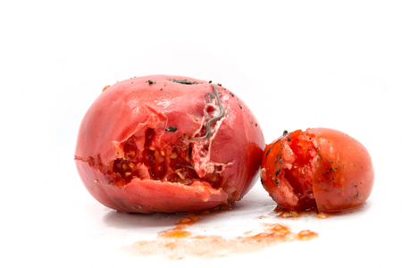 insides: Two rotten tomatoes with a worm isolated on white