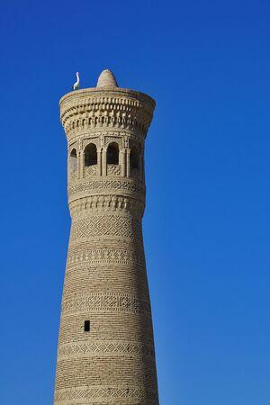 Minaret in Bukhara Uzbekistan