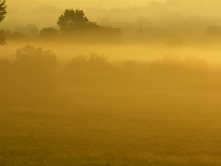 Germany: Meadow in the autumn mist at sunrise