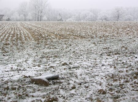 Forgotten boots in the field, covered with snow and hoarfrost