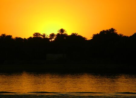Sunset in Egypt on the Nile with palm trees in the background as a silhouette Banco de Imagens