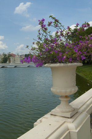 bedeck: flower pot in front of water royal park Stock Photo
