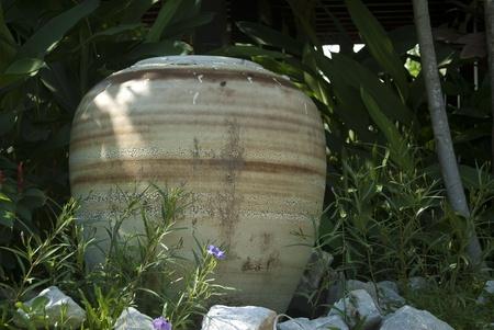 florae: jar decorate in garden, Thiland