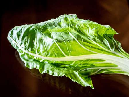 Chard leaf.Chard leaf. Edible vegetable with green leaf and white, fleshy stem. Stock Photo