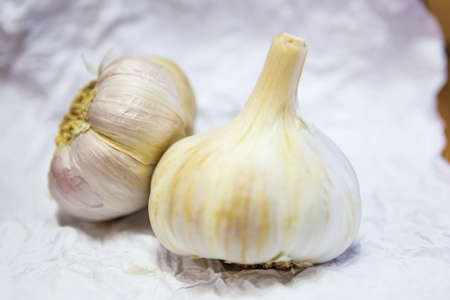 Garlics on white background. Species used to flavor foods.
