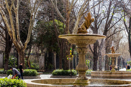 Urban landscape, views of statues and monuments in the buildings of Madrid, Spain.